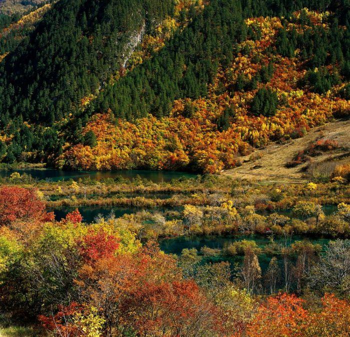China by Thierry Bornier (23 pics)