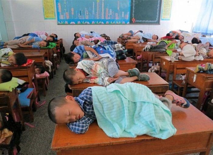 Chinese Kids Taking a Nap at School (5 pics)