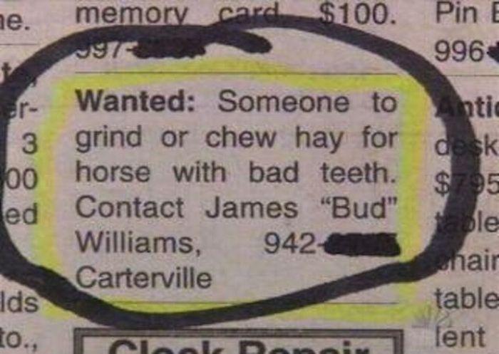 The Worst Jobs Ever (50 pics)