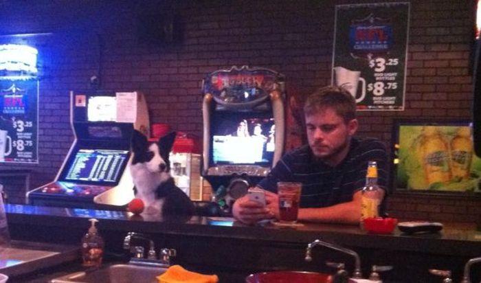 Парень у барной стойки фото фото 806-34