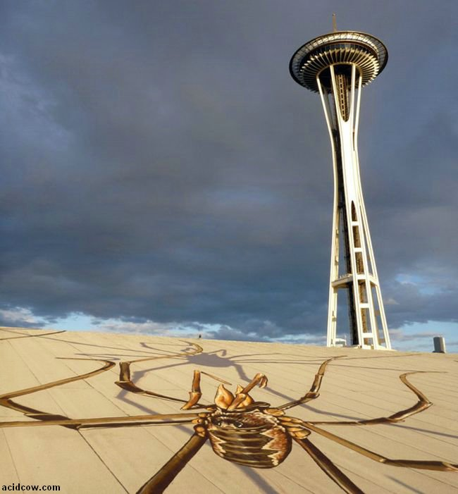 Daddy Long-Legs Overtake the Seattle Center Armory (4 pics)