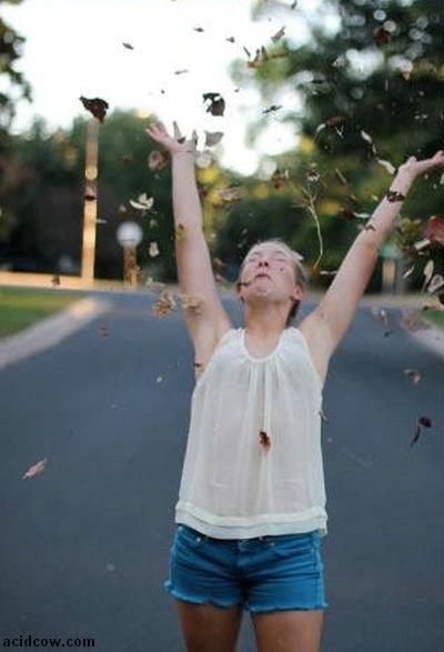 How to Make Good Fall Photos (6 pics)