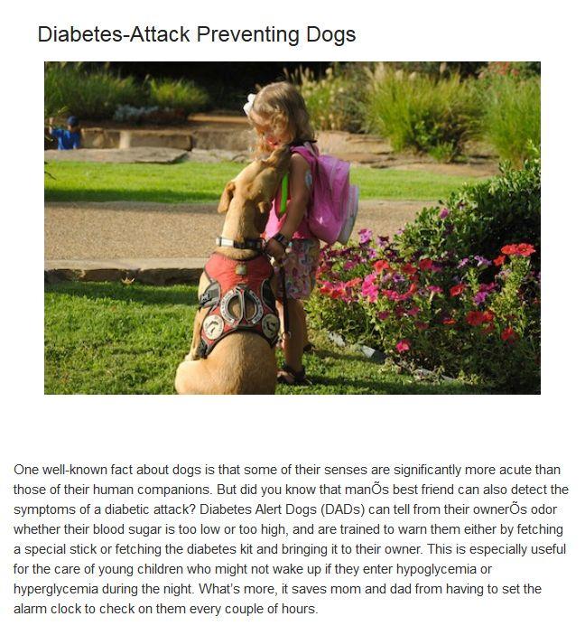 Bizarre Medical Treatments Involving Animals (10 pics)