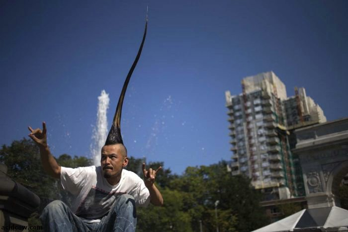 World's Tallest Mohawk (5 pics)