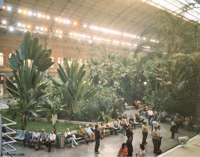 Botanical Garden Inside a Train Station (9 pics)