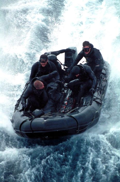 SEALs (81 pics)