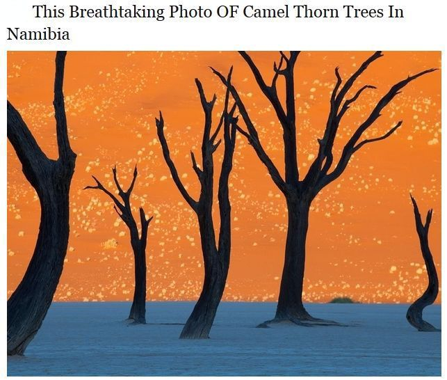 Unbelievable Pictures That Are Actually Real (20 pics)