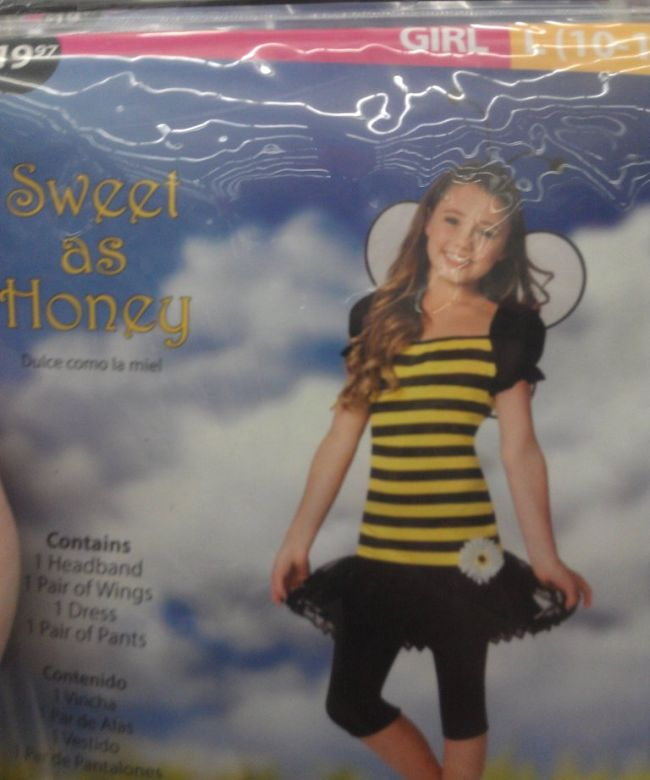 Evolution of a Bee Costume (4 pics)