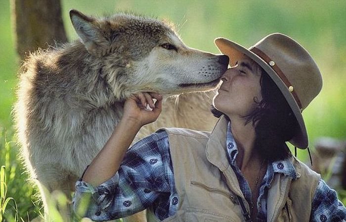 Living With Wolves (18 pics)