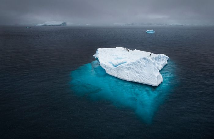 National Geographic Photo Contest 2012 (50 pics)