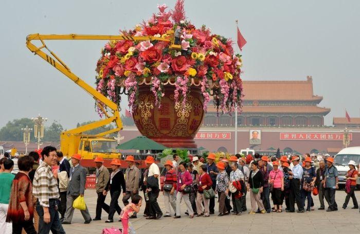 Very Big Flower Pot (6 pics)