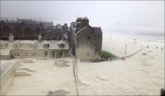 Cappuccino Coast in Scotland (7 pics)