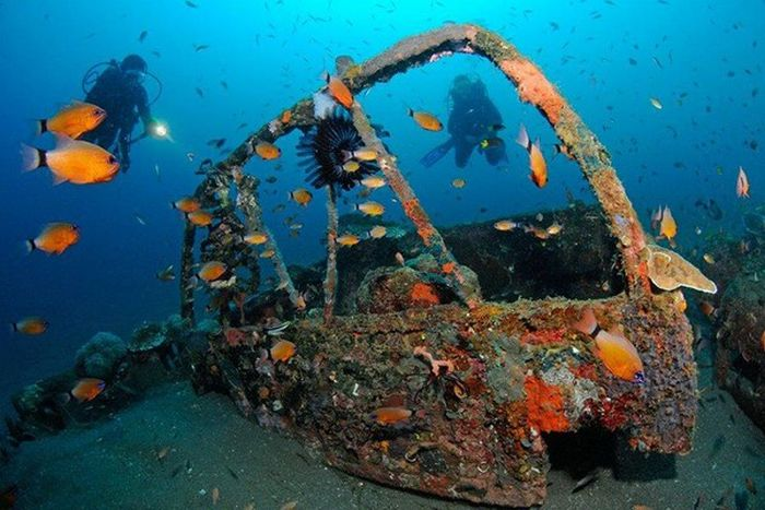 Artificial Reefs (29 pics)