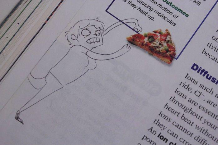 Textbook Drawings (46 pics)