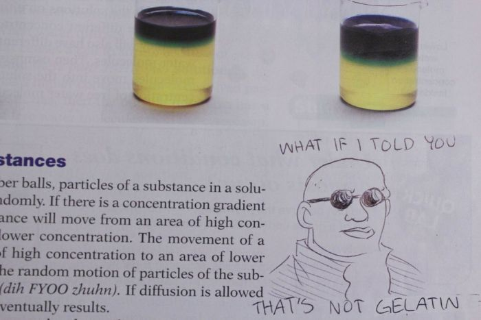 Textbook Drawings (46 pics)