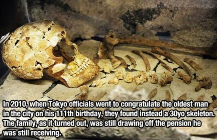 Facts You Probably Didn't Know (27 pics)