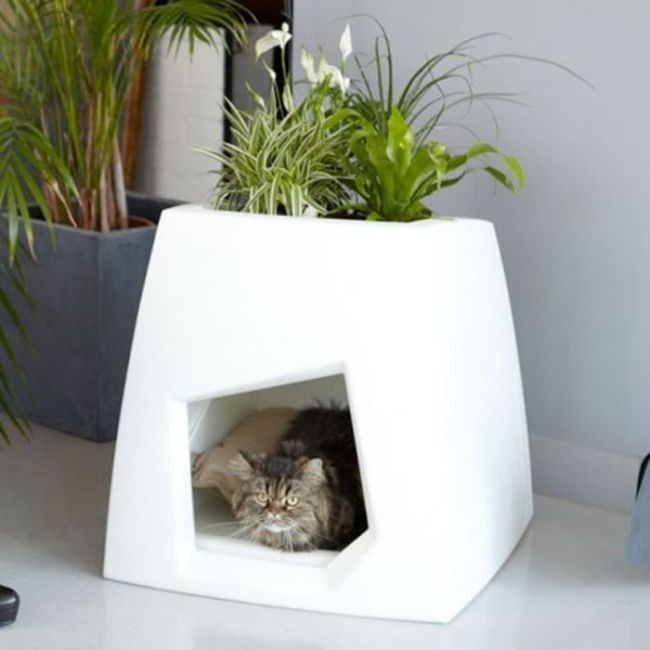 Creative Cat Houses (31 pics)