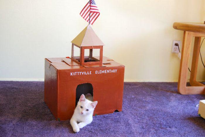 Casas creativas para gatos