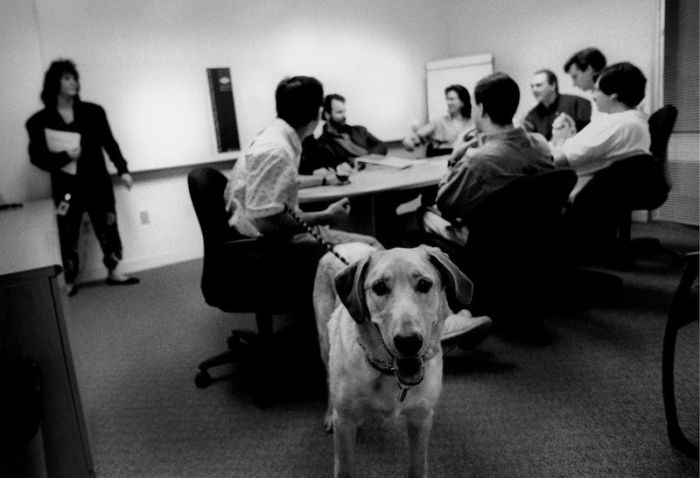 The Early Photos of Apple, Microsoft and Adobe (19 pics)