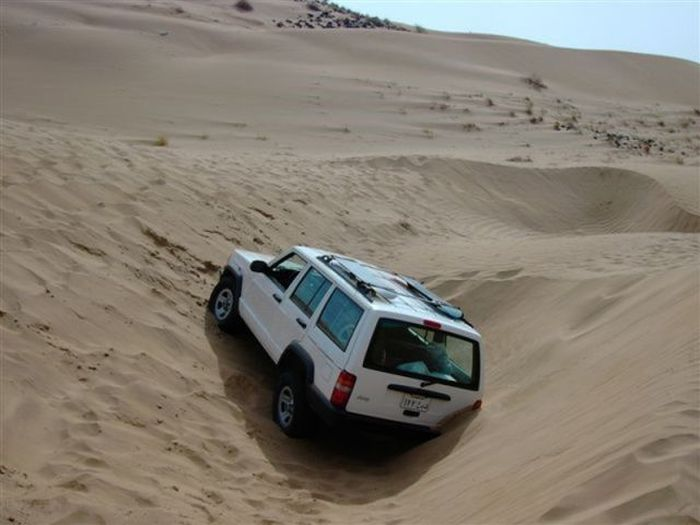 We Are Stuck (18 pics)