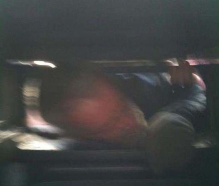 Poor Fellow Got His Head Stuck in a Bin (5 pics)