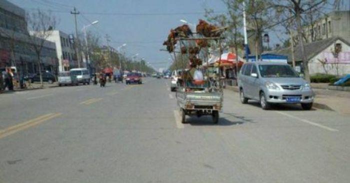 Chicken Transportation in China (3 pics)
