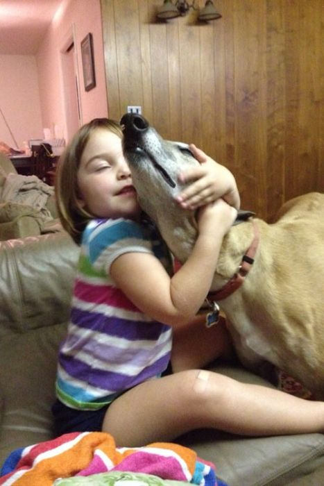 Our Best Friends (48 pics)