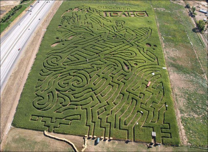 Awesome Corn Crop Maze Art (37 pics)
