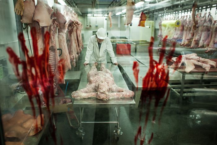 Capcom's Resident Evil 6 Human Butchery (13 pics)