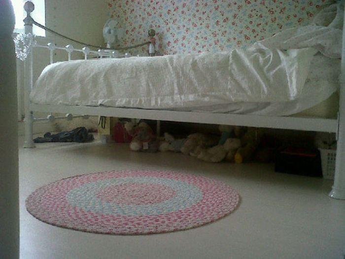 Where is Waldo the Cat? (13 pics)