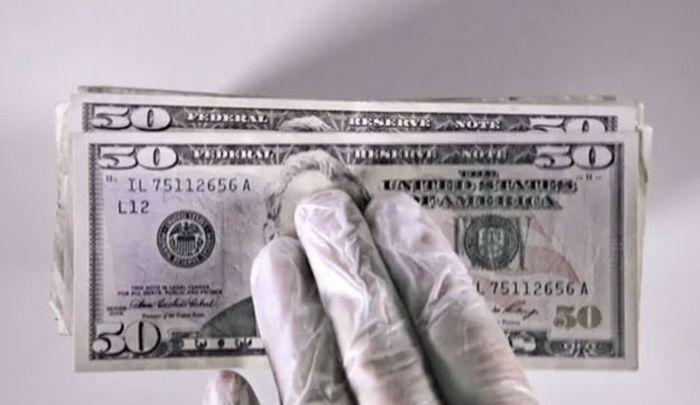 Shredding $10,000 (9 pics)