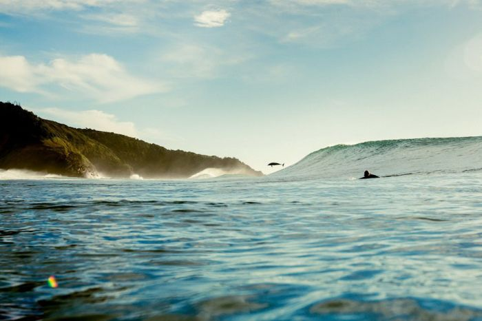 Surfing by Alex Frings (31 pics)