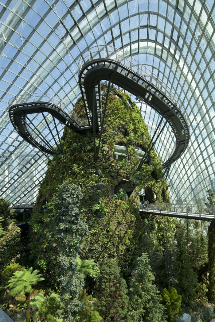 Four Seasons Winter Garden in Singapore (14 pics)