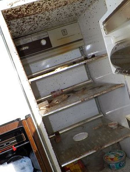Inside the Hoarder's House (8 pics)