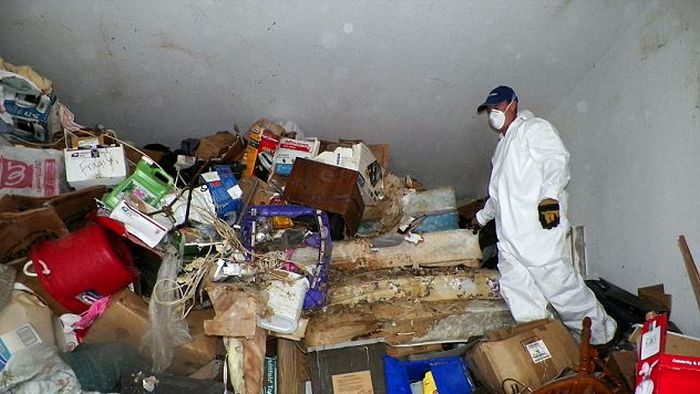 Inside the Hoarder's House (8 pics)