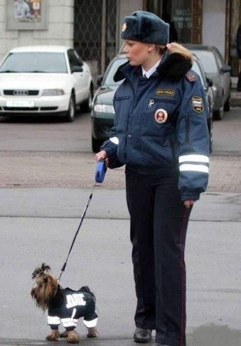 Interesting, Awkward and Funny Photos from Russia (50 pics)