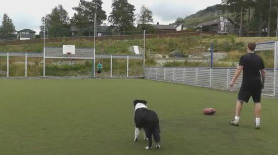 Unbelievable Precision Ball Performance