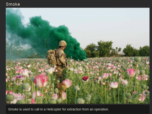 The War in Afghanistan (37 pics)
