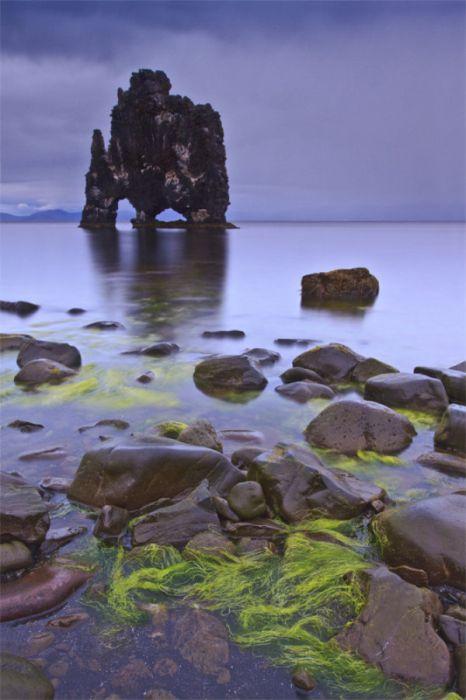 Dynosaur Rock Hvítserkur (16 pics)