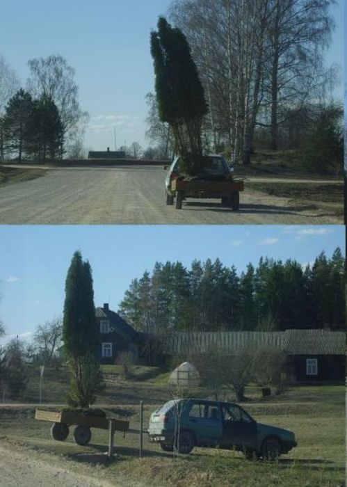 Only in Latvia (51 pics)