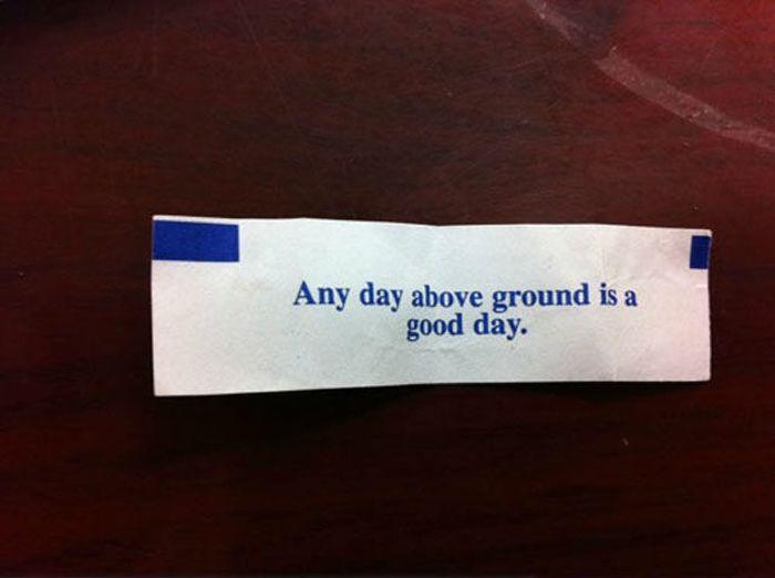 You Make a Good Point… (34 pics)