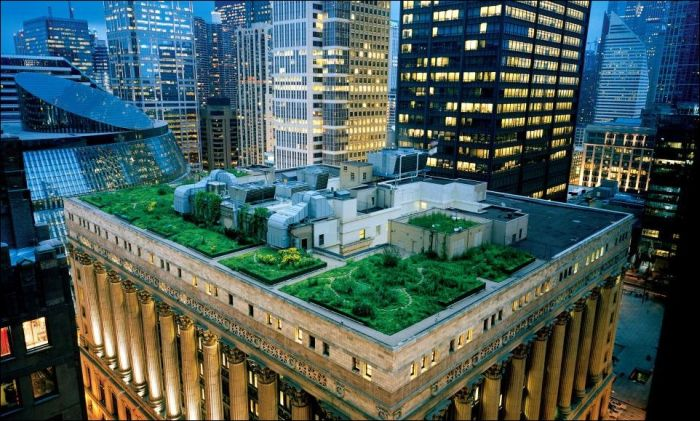 Green Roofs (47 pics)