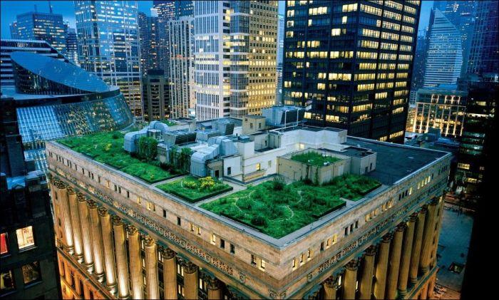 Green Roofs (47 pics)