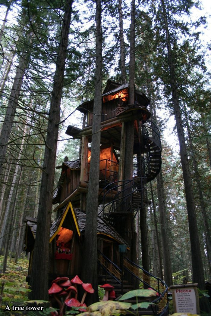 Tree Houses For Adults (17 pics)