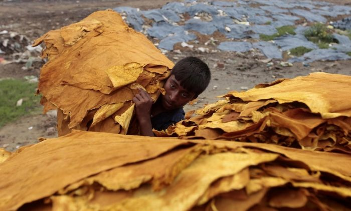 Leather Production in Bangladesh (15 pics)