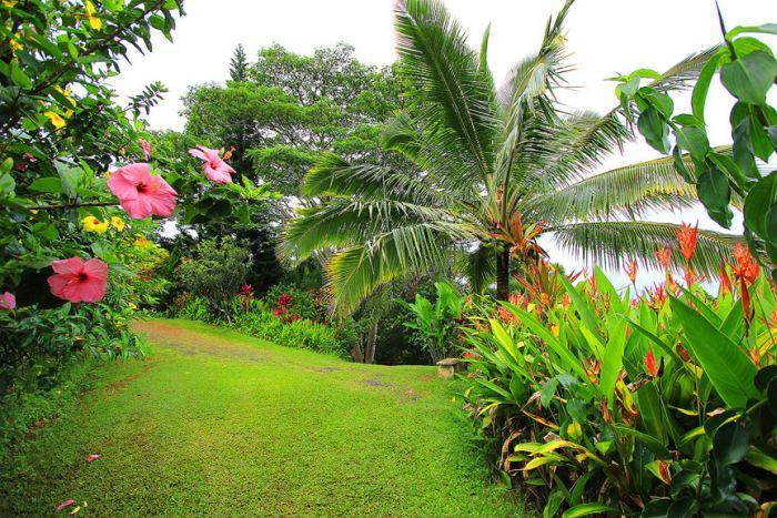 Garden of Eden (32 pics)