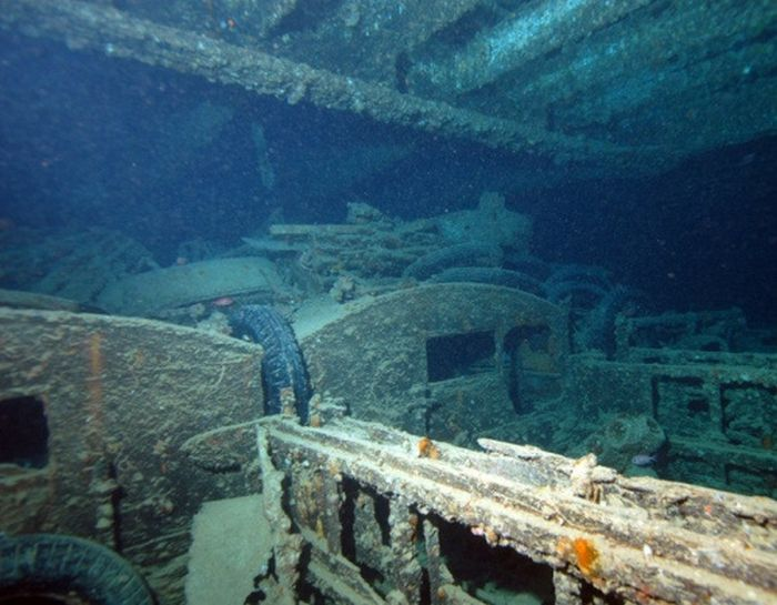 Cars Reef (44 pics)