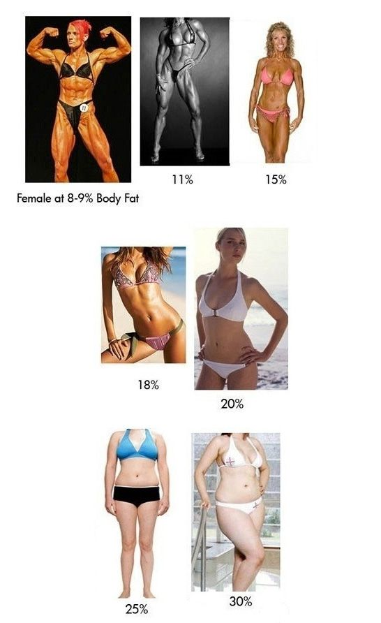 Body Fat Percentage Explained (2 pics)