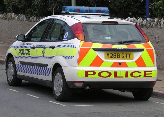 Police Cars (74 pics)