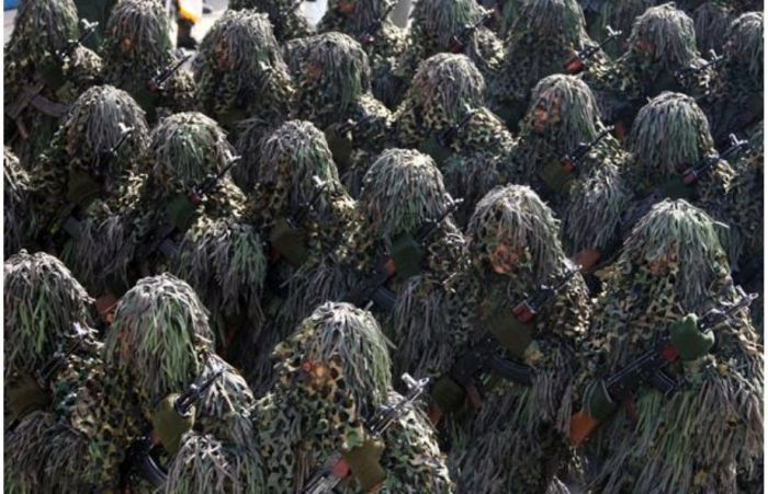 Military Camouflage (84 pics)